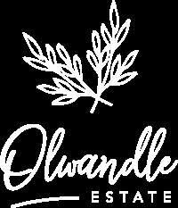 Olwandle_logo_3